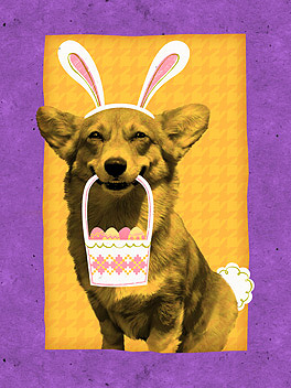easter puppy easter card